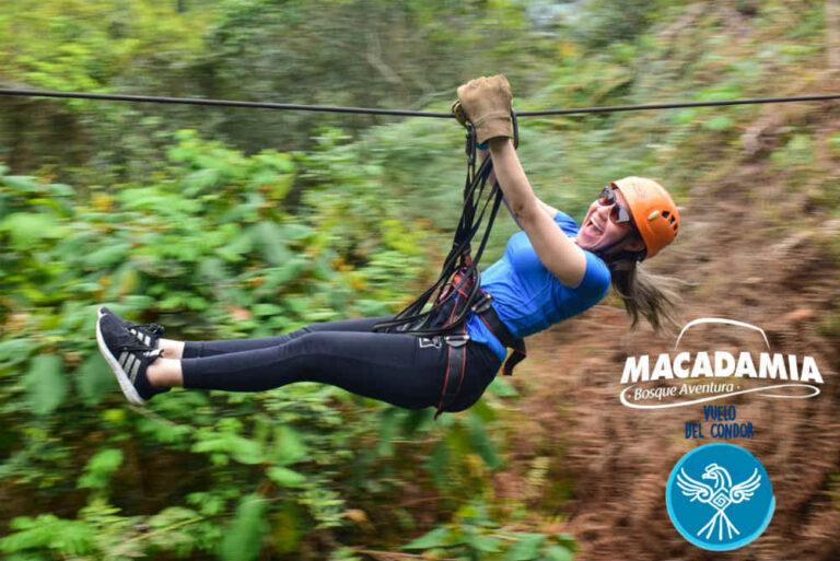 Macadamia Bosque Aventura La Mesa (5)