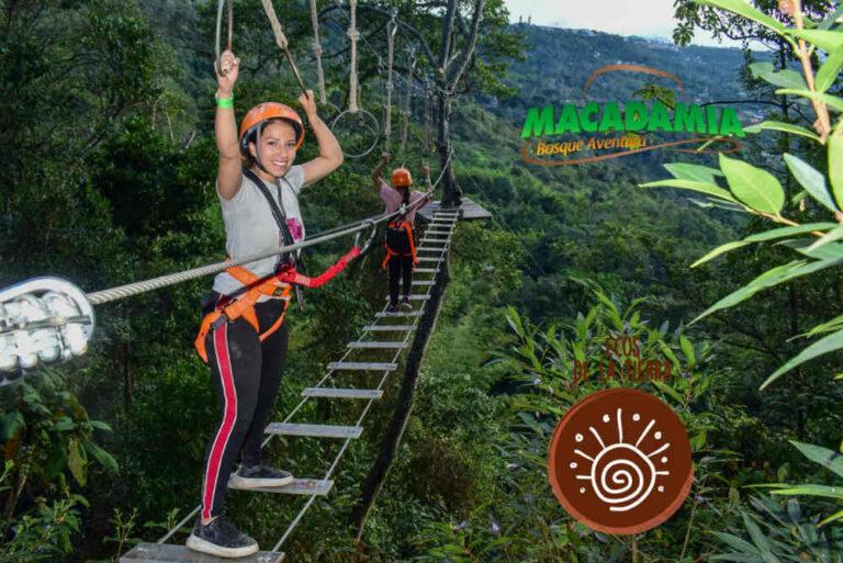 Macadamia Bosque Aventura La Mesa (7)
