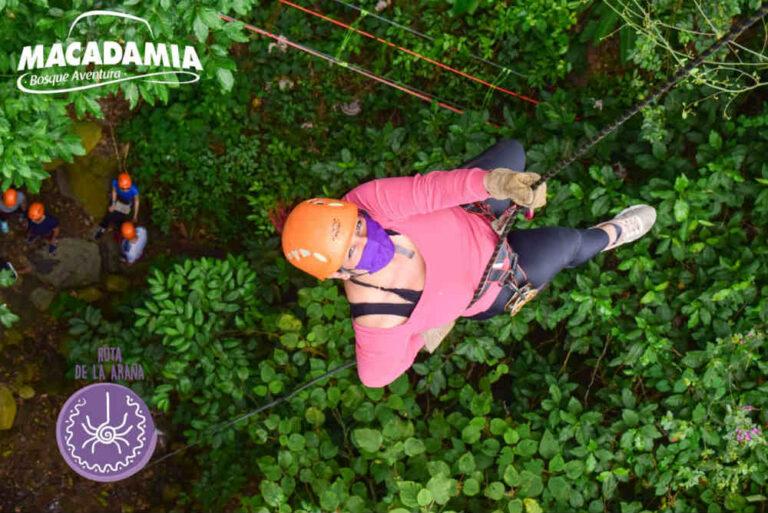 Macadamia Bosque Aventura La Mesa (8)